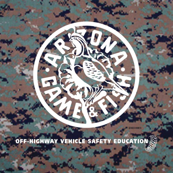 State of AZ-Game on camo bandanna