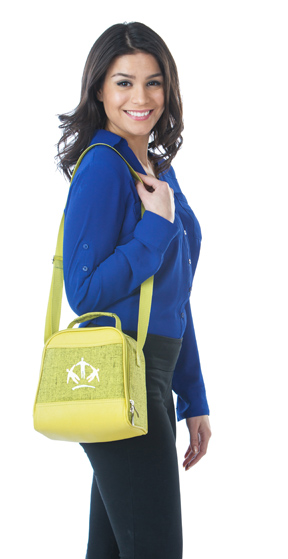 Picnic Plus lunch tote web