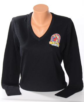 Port Authority Ladies V-neck sweater web