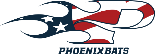 _usa-flag-logo-1