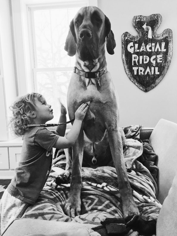 Willow Zavadil listens to her Great Dane's heart with a play stethescope.
